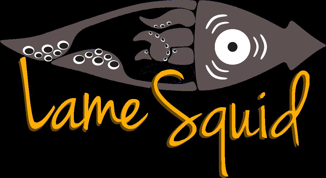 Le groupe de musique irlandaise Lame Squid